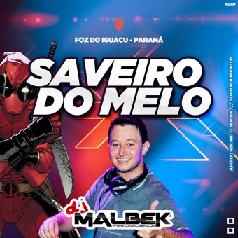 SAVEIRO DO MELO VOL1