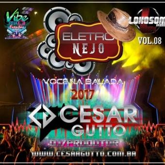 ESPECIAL ELETRONEJO 2017 VOL.08