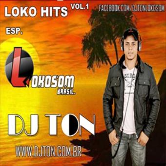 Loko Hits Top 15 2013 Esp. Lokosom Brasil