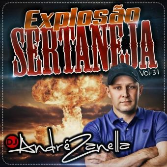 Explosao Sertaneja Volume 31