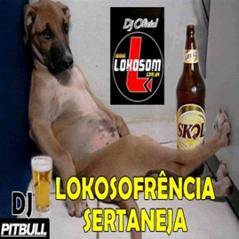 LoKoSofrência Sertanejo Universitário (As Mais Tocadas)