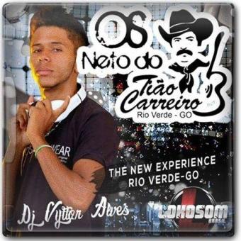 COMITIVA OS NETOS DO TIÃO CARREIRO