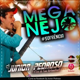 MEGA NEJO MAIO - DJ JUNIOR PEDROSO