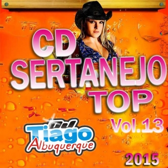Sertanejo Top Vol.13 - 2015