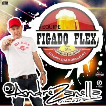 Figado Flex Volume 2