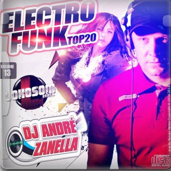 Electrofunk Top 20 Vol.13
