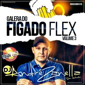 Galera Do Figado Flex Volume 3