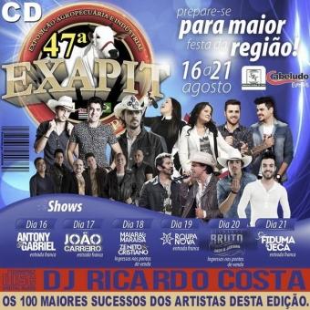 EXAPIT 2016, TOP 100 Sucessos dos artistas desta edição