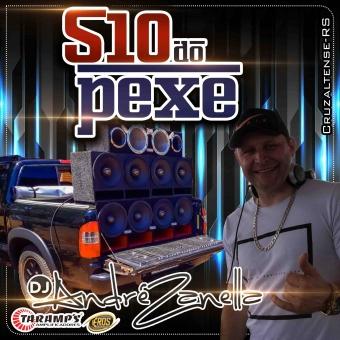 S10 DO PEXE 2020