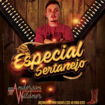 Especial Sertanejo - Dj Anderson Wildner