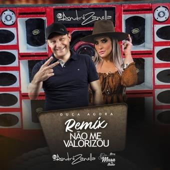 Não Me Valorizou - Funk Remix (Dj André Zanella E Classy)