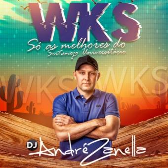 WKS O melhor do Sertanejo em versões Remix 2020