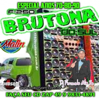 F250 BRUTONA DO SUL DJ FERNANDO MIX