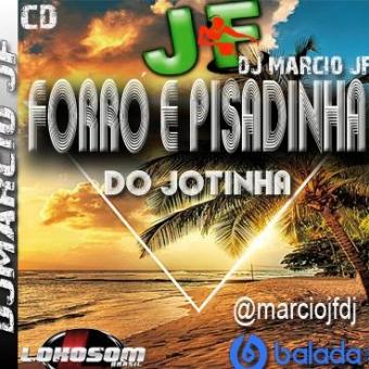 FORRO E PISADINHA VOL 01