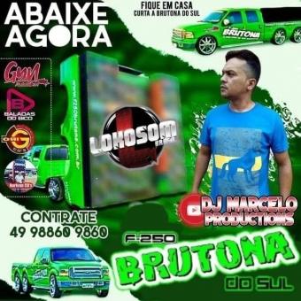 F250 BRUTONA DOSUL DJ MARCELO PRODUCTIONS