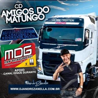 Amigos do Matungo ((Ao vivo))