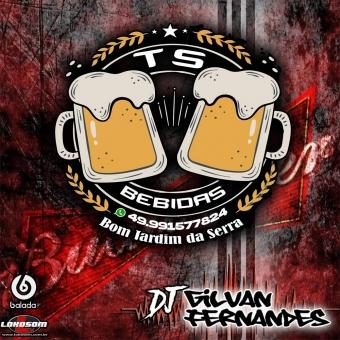 TS Bebidas Vol 2 - DJ Gilvan Fernandes