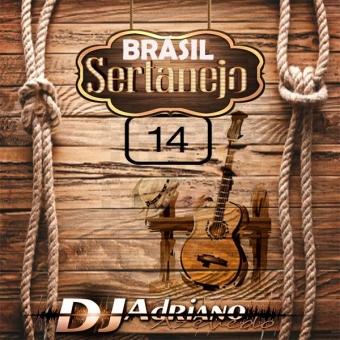 BRASIL SERTANEJO VOL 14