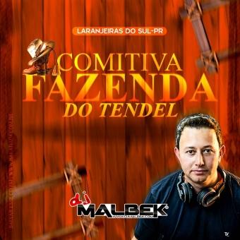 COMITIVA FAZENDA DO TENDEL VOL2