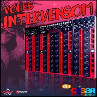 Volks Intervensom