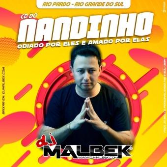 CD DO NANDINHO ESPECIAL FUNK