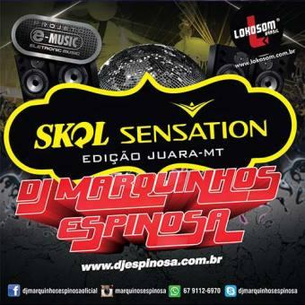 Skol Sensation Edição Juara - Mt