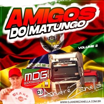 Amigos do Matungo Volume 2 ((Ao vivo))
