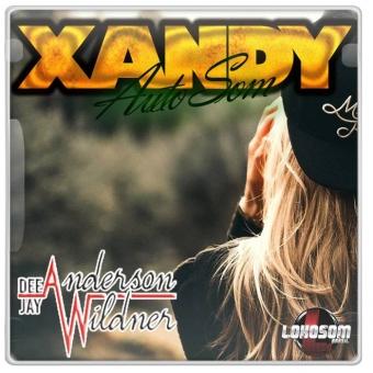 Xandy Auto Som - Dj Anderson Wildner