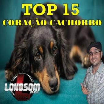 TOP 15 CORAÇÃO CACHORRO LOKOSOM