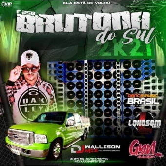 F250 BRUTONA DJ WALLISON MIX